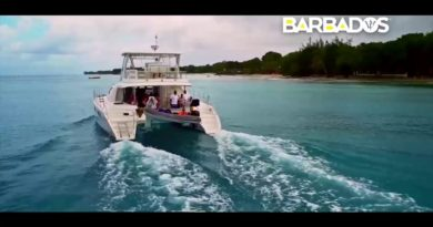 Barbados: Carribean Life