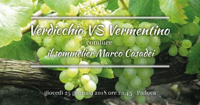 Verdicchio VS Vermentino: differenze a confronto | Itinerarinelgusto