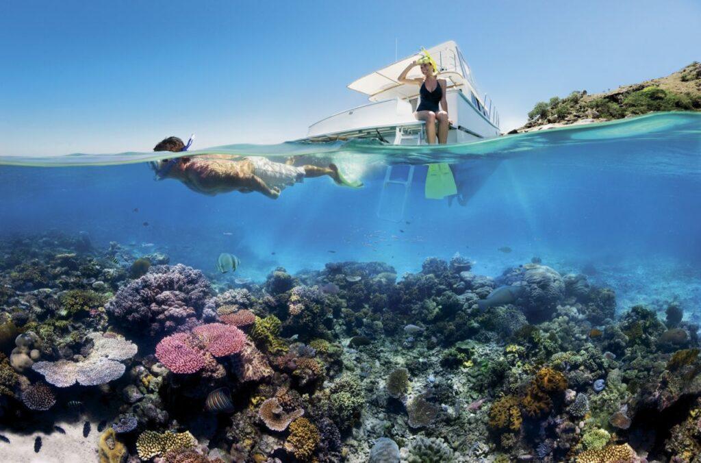 Regenwald und Korallenriff